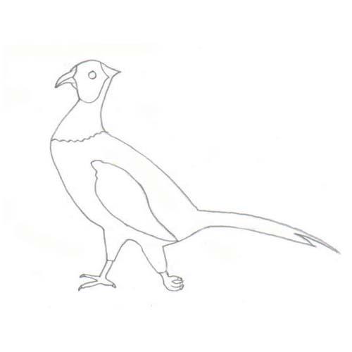 Tipareste si coloreaza: fazan
