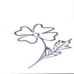 Tipareste si coloreaza: floarea.