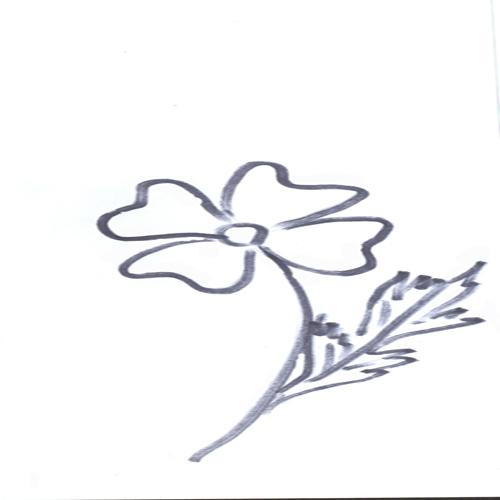 Plansa De Colorat Floare
