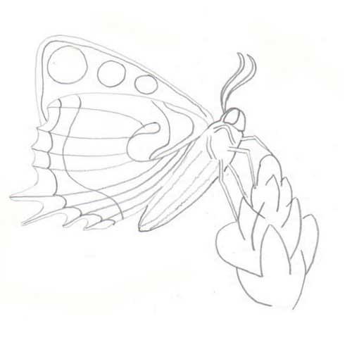 Tipareste si coloreaza: fluturas1.