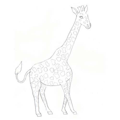 Plansa De Colorat Girafa