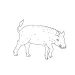 Tipareste si coloreaza: porc mistret