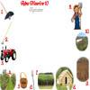 Rebus cu meserii: sapa, grebla, tractor, livada, cos, furca, plantatie, cotet, ogor, ferma, agricultor.