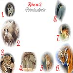 Rebus animale salbatice: lup, rinocer, pantera, girafa, puma, tigru, cangur, pinguin